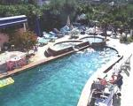 Paradise Bay Hotel Picture 1