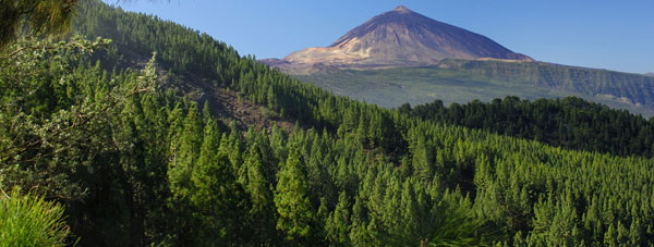 View Tenerife for your next holiday