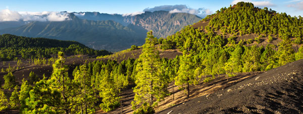 View La Palma for your next holiday