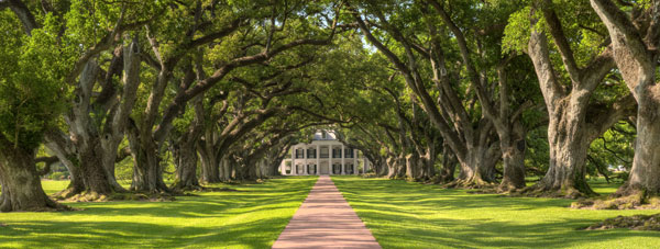 View Louisiana for your next holiday