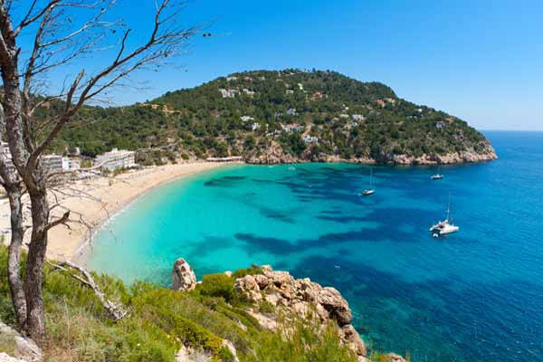 Photo of Cala San Vicente Ibiza