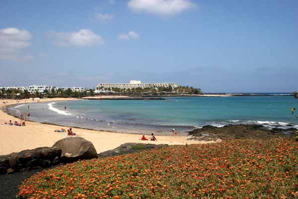 Holiday Village Flamingo Beach Resort Playa Blanca Lanzarote Website