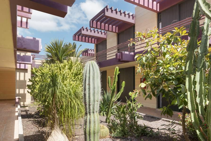 Palia Don Pedro Hotel, Costa del Silencio, Tenerife, Canary Islands ...: https://www.sunshine.co.uk/hotels/Palia_Don_Pedro_Hotel-233.html