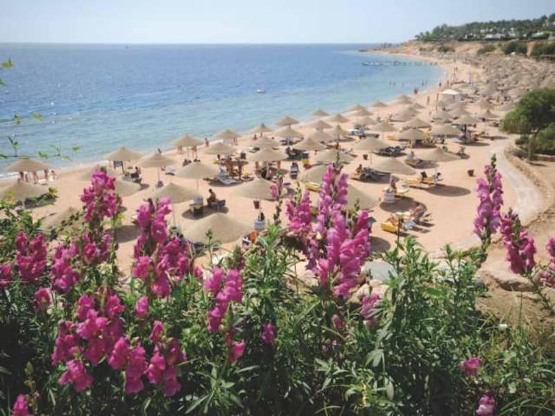 Holidays at Domina Coral Bay Aquamarine Hotel in Sharks Bay, Sharm el Sheikh