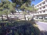 Brioni Hotel Picture 3
