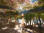 Riu Tikida Garden Hotel Picture 4