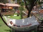 Perdikia Hill Family Resort Picture 9