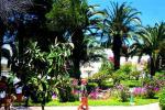 Les Orangers Beach Resort Hotel Picture 14