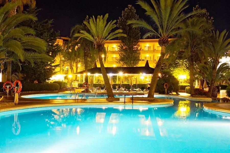 Holidays at Zafiro Palmanova in Palma Nova, Majorca