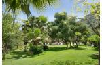 Alberi Del Paradiso Hotel Picture 23