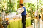 Alberi Del Paradiso Hotel Picture 71