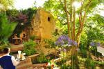 Alberi Del Paradiso Hotel Picture 72