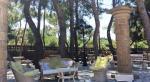 Vasilikos Beach Hotel Picture 8