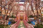 Bellagio Hotel Picture 9