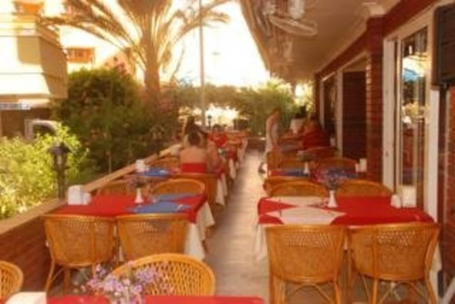 Holidays at Ozcan Hotel in Alanya, Antalya Region