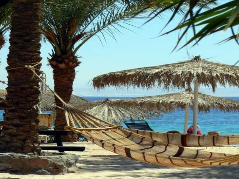 Holidays at Hilton Taba Resort Hotel in Taba, Egypt