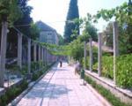 Villa Rasica Hotel Picture 4