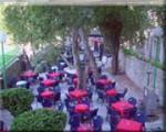Villa Rasica Hotel Picture 6