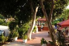 Siesta - Juniper Hotel