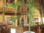Eurostars Hacienda Vista Real Hotel Picture 2
