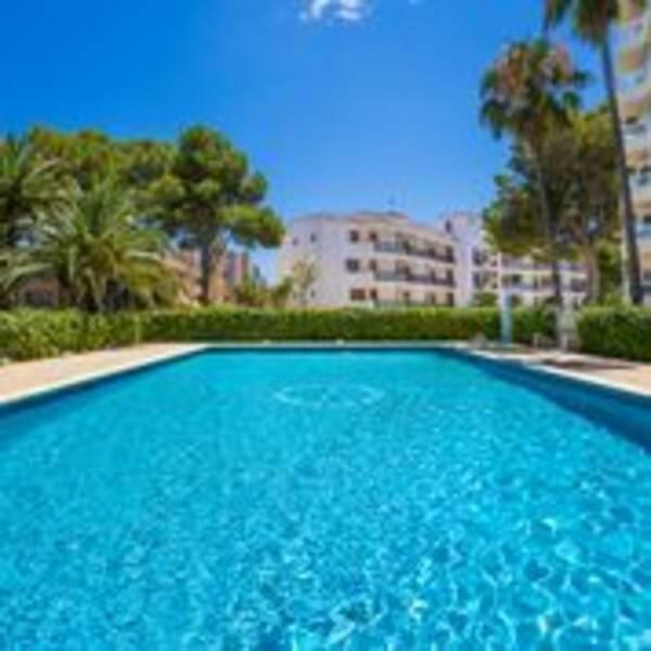 Holidays at Las Palomas Apartments in Palma Nova, Majorca