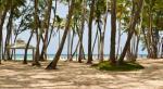 Vista Sol Punta Cana Beach Resort & Casino Picture 4