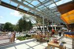 Holidays at Flamingo Grand Hotel in Albena, Bulgaria