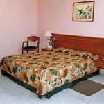Gran Caribe Vedado Hotel Picture 13