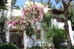 Toloman Bitez Park Apartments Picture 8