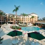 Springhill Suites Marriott Village Picture 3