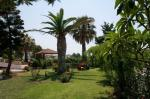 Asterias Hotel Picture 4