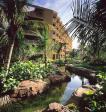 Hilton Aruba Caribbean Resort and Casino Picture 0