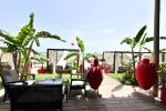 Royal Nozha Hotel Picture 13