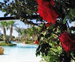 Acacia Resort Parco dei Leoni Picture 22