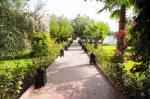 Riad La Maison Des Oliviers Hotel Picture 11