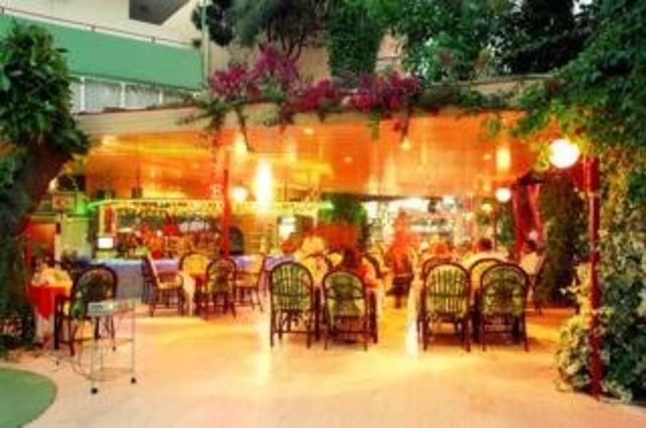 Holidays at International Hotel in Alanya, Antalya Region