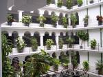 Zoraida Garden Hotel Picture 2
