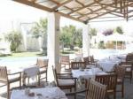 Cretan Malia Park Hotel Picture 3