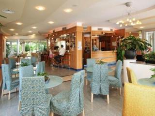 Ambassador Hotel and Suites