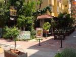 Mola Hotel Picture 4