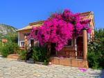 Efrosini Village Hotel Picture 4