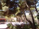 Playa Parc Apartments Picture 3