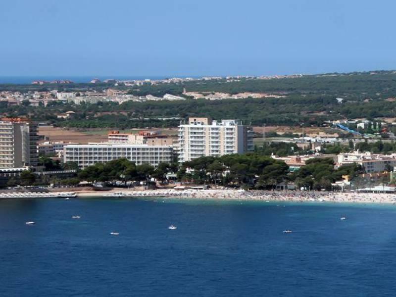 Holidays at Melia South Beach in Magaluf, Majorca