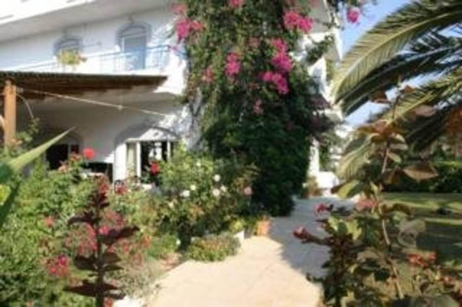 Holidays at Gorgona Hotel in Amoudara, Crete