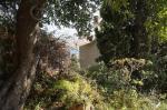 Mediterranee Hotel Picture 15