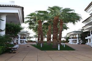 Holidays at Dessole Seti Sharm Palm Beach Resort Hotel in Om El Seid Hill, Sharm el Sheikh