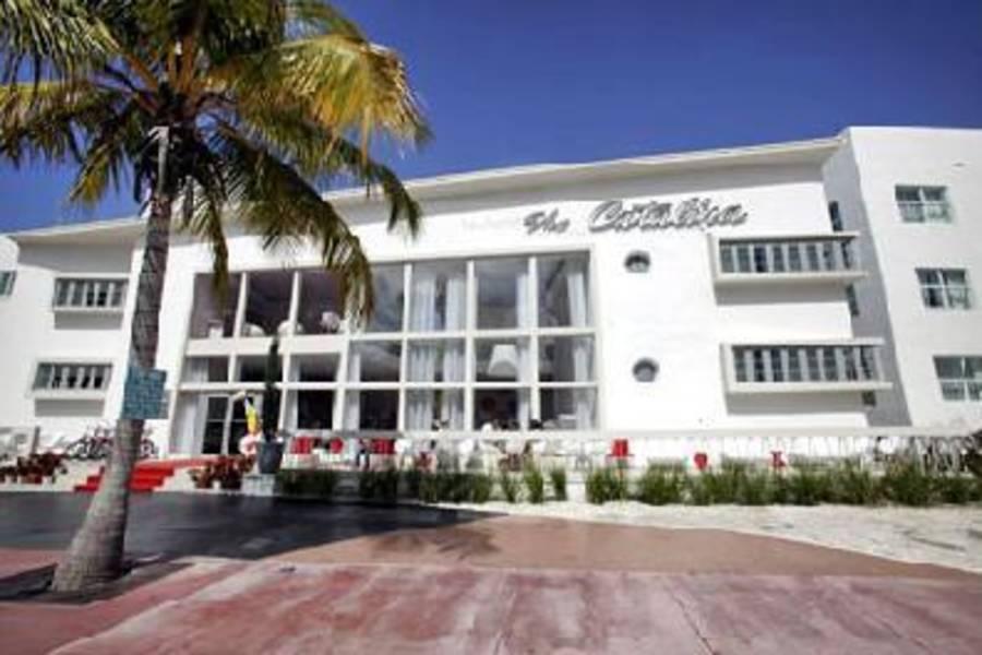 Holidays at Catalina Hotel and Beach Club in Miami Beach, Florida