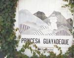 Princesa Guayadeque Hotel Picture 10