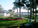Holidays at Nova Beach Hotel in Side, Antalya Region