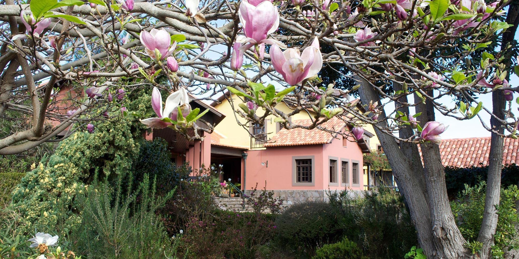 Holidays at Quinta Do Furao Hotel in Sao Vicente, Madeira